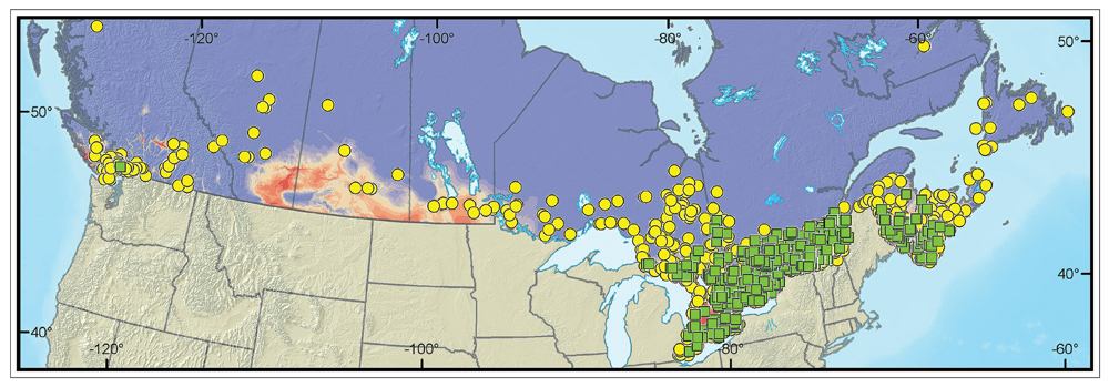 Distribution of gypsy moth in Canada from 2001 to 2006. Image © Natural Resources Canada