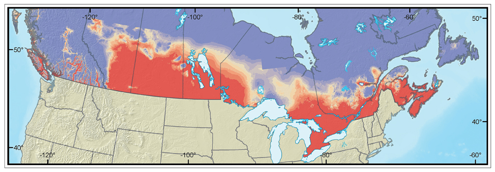 Potential distribution of gypsy moth in Canada, #2. Image © Natural Resources Canada