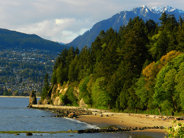 In 2009, Vancouver's renowned Stanley Park was discovered to be home to 31 invasive insect species.