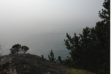 The fog closed in at Beechey Head. East Sooke Park, March 29 2013