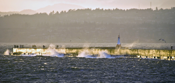 Waves breaking on the Ogden Point breakwater, Victoria, BC. Photo by Stewart Butterfield.