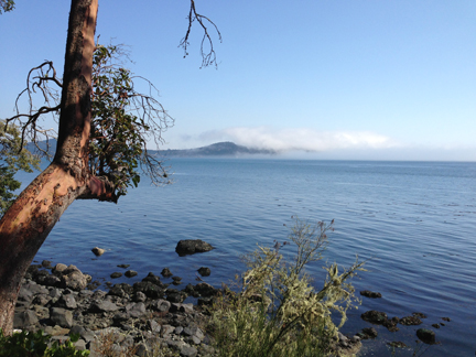 Clear in East Sooke Park; Cloudy at Rocky Point