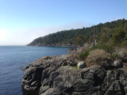 Fog rolling in. East Sooke Park, March 29 2013