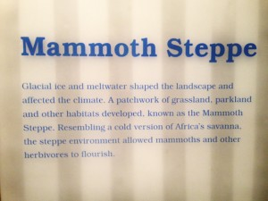 The Ice Ages Gallery: Mammoth Steppe sign