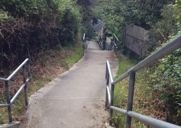 Pathway from Mildred Street to Wilkinson slips between backyards.