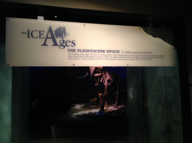 The Ice Ages Gallery