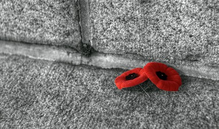 http://www.timescolonist.com/opinion/columnists/monique-keiran-wearing-a-poppy-is-never-unfashionable-1.2106214